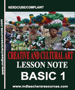 Primary 1 CCA lesson note